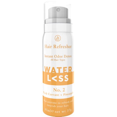 No.2 Hair Refresher Black Currant + Pineapple 45 ml