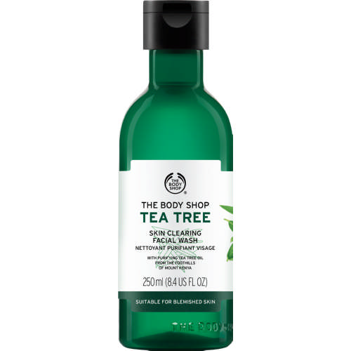 Tea Tree Skin Clearing Facial Wash 250ml