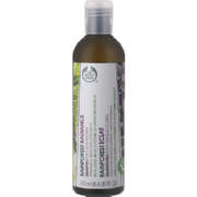 Rainforest Shampoo Radiance 250ml