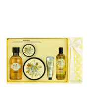 Moringa Medium Gift Set